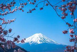 Triết lý Wabi sabi của người Nhật: Cuộc đời không gì hoàn hảo nên đừng cố tìm, hạnh phúc là khi con người chấp nhận sống với khiếm khuyết